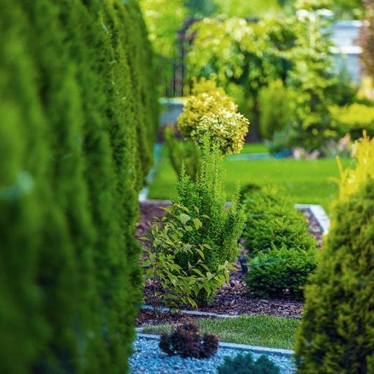 wg-green-garden-sm